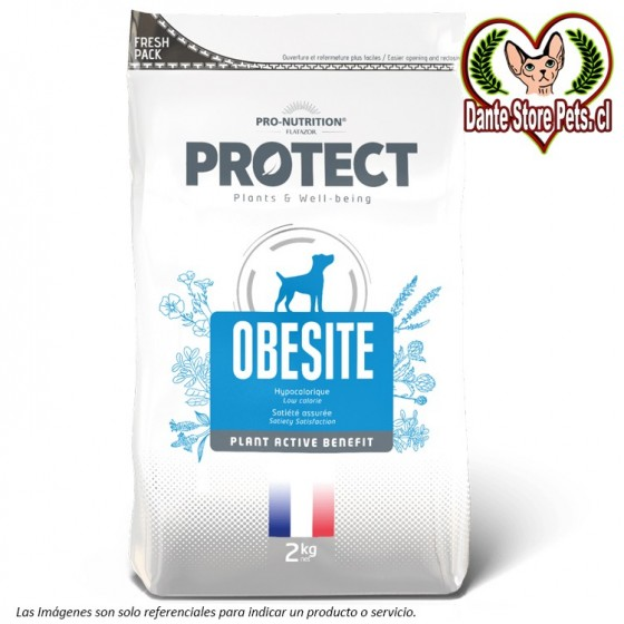PROTECT OBESITE CANINO 2KG